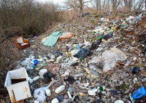 Озеро-окрасу Приірпіння перетворюють на вірусонебезпечне сміттєзвалище